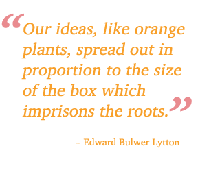 quote about oranges